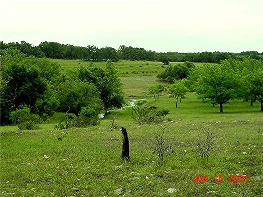 [Looking West at Lucky Hit Ranch, Leander, Texas - June 15, 2001]