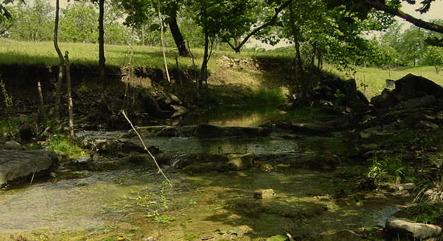 Lucky Hit Ranch has many beautiful locations along the creek