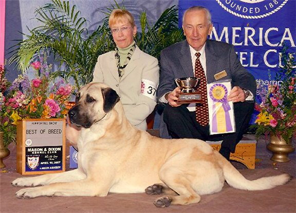 April 15, 2007 - BEST OF BREED - BOUDREAU at Harrisberg Regional Speciality